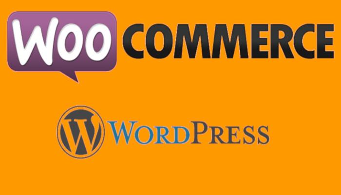 Cómo construir mi tienda online con wordpress+woocommerce